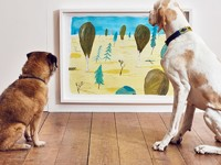Открылась первая в мире арт-выставка для собак - Домашние питомцы ... - «Дом»