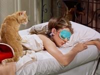 Тест: какой отдых вам подходит - Отношения - Леди Mail.Ru - «Любовь»