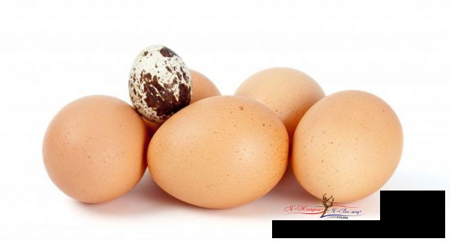 Готовимся к Пасхе: какие яйца лучше