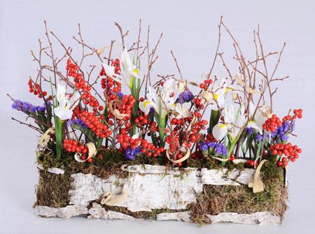 На 8 марта – своими руками: весенняя грядка в обувной коробке - «Досуг и хобби»