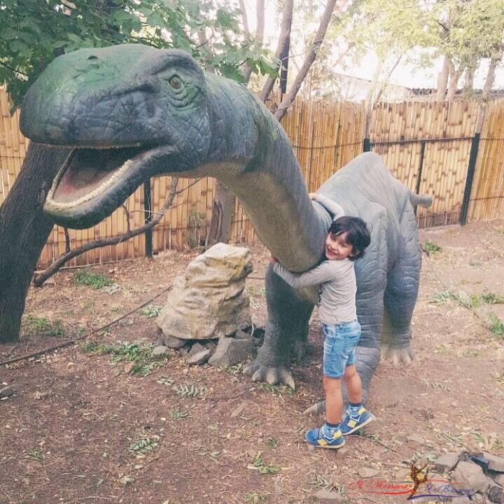 «Давай его возьмем жить к нам!»: сын Анфисы Чеховой завел друга-динозавра - «Дети»