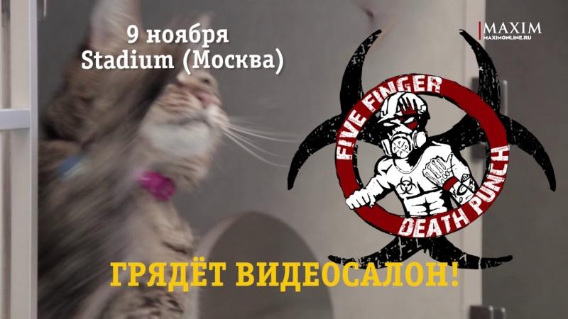 Скоро в Видеосалоне Five Finger Death Punch!  - «Видео советы»
