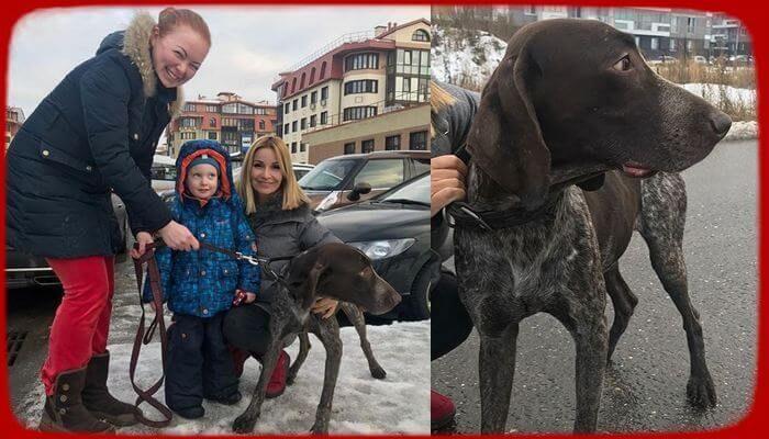 Ольга Орлова вернула маленькому мальчику его друга - «Шоу-Бизнес»