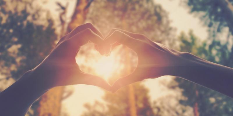 Каждый рано или поздно находит свое счастье - «Стиль жизни»