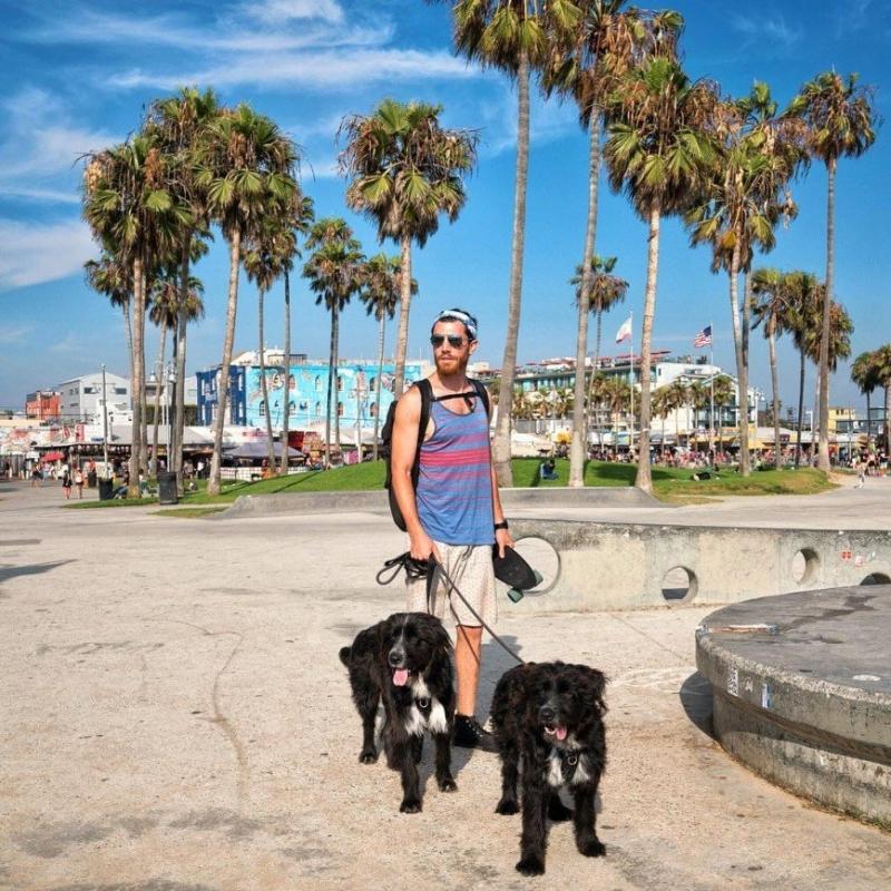 Американец сделал двух брошенных щенков звездами Инстаграма - «Я и Дом»