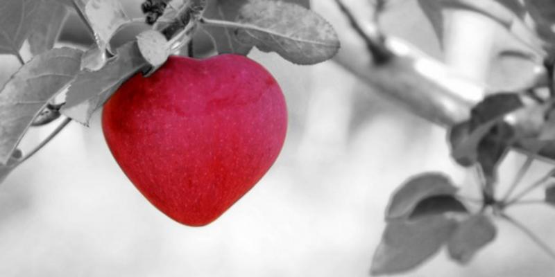 10 правил, чтобы влюбить в себя мужчину