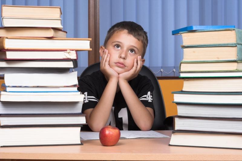 Список книг на лето, 5-6 класс. Школьная программа и внеклассное чтение - «Образование»
