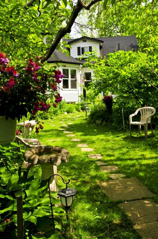 Как правильно расположить теплицу, деревья и кусты на садовом участке - «Дом»