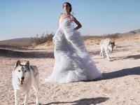 Бесстрашная Зои Кравиц снялась в атмосферной фотосессии с волками - «Я как Звезда»