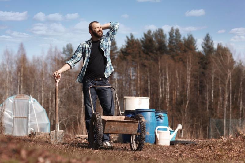 Как улучшить почву на садовом участке - «Дом»