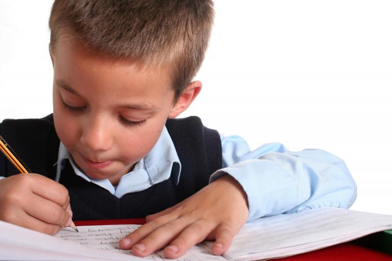 Почему ребенок не делает уроки вовремя и быстро? - «Образование»