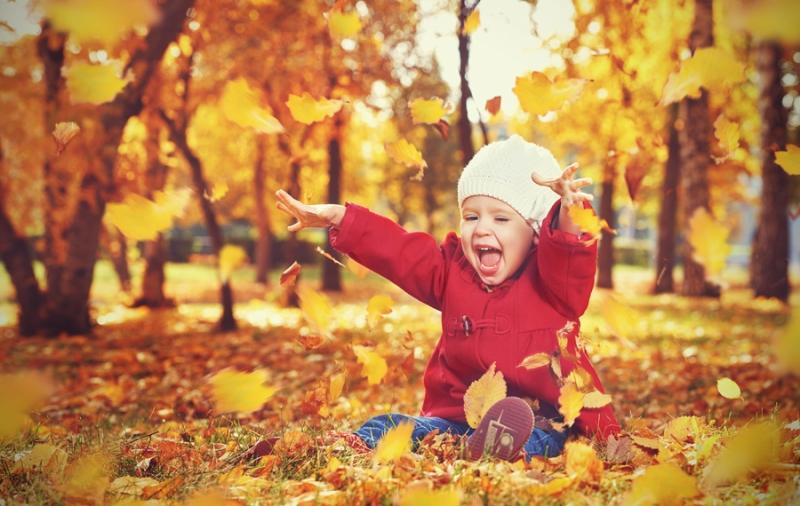 Чтоб осенью здоровы были ребятишки - на помощь спешат БЭБИ Формула Мишки! - «Дети»
