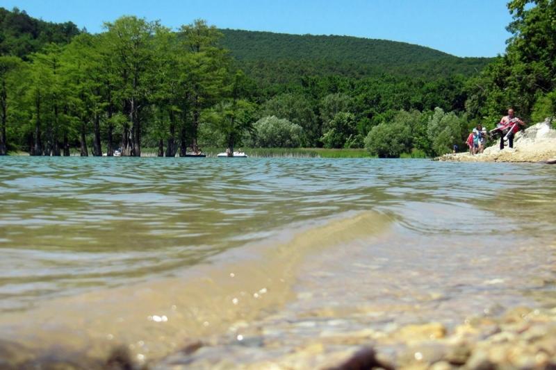 Откуда взялись кипарисы в озере Сукко: отзыв с фото - «Путешествия»