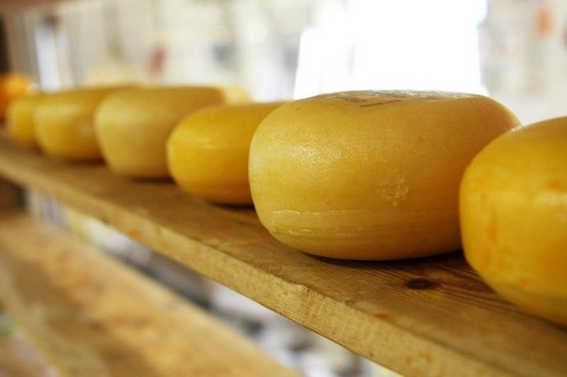 Идеальный продукт: почему медики рекомендуют есть сыр каждый день - «Я и Здоровье»